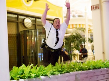 17-paul-blart-mall-cop-2-2